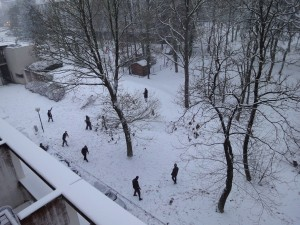 Snow fight from my window